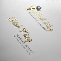Waterslide decal - guitar logo - TLC Guitar Goods