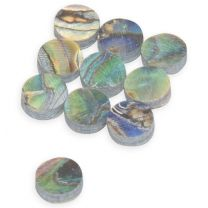 Dot 6mm abalone green